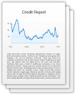 DP Credit Report